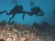 Mira dibujos animados gratis Protect California Seamounts