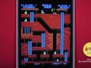 Super Bagman Video Game