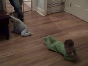 Watch free video Crazy Babies