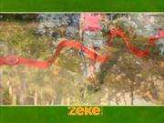 Watch free video Zeke Leash