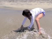 Watch free video Biomimicry - Inspiration from Shark
