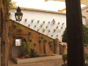 Watch free video Hola Andalucia