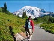 Watch free video Mt. Rainier National Park in WA, USA