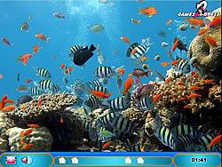 Hidden Hints - Aquatic Creature game