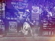 Watch free video PBR Campaign 2016