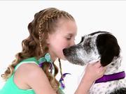 PawTizer Commercial