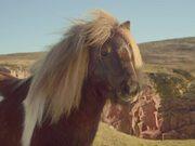 Mira dibujos animados gratis Three Video: The Pony