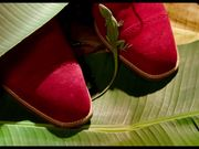Manolo: The Boy Who Made Shoes for Lizards Trailer