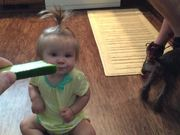 How to Get Your Kids to Enjoy Eating Vegetables