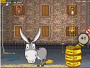 Dungfoo Donkey