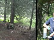 Watch free video Glacier National Park: Grizzly Bear Research