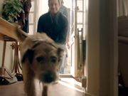 Watch free video Pedigree Commercial: Bad Dog, Good Dog