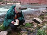 Mira dibujos animados gratis Hidden Waters - Grand Canyon In Depth