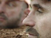Watch free video Zweifel Commercial: Life of a Potato