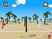 Game Beach Volleyball Game