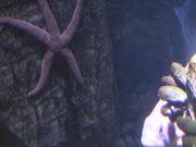 Mira dibujos animados gratis A Cool Looking Starfish