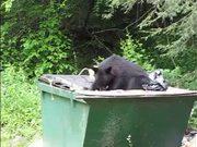 Watch free video Cumberland Gap NHP: Is Your Trash Secure?
