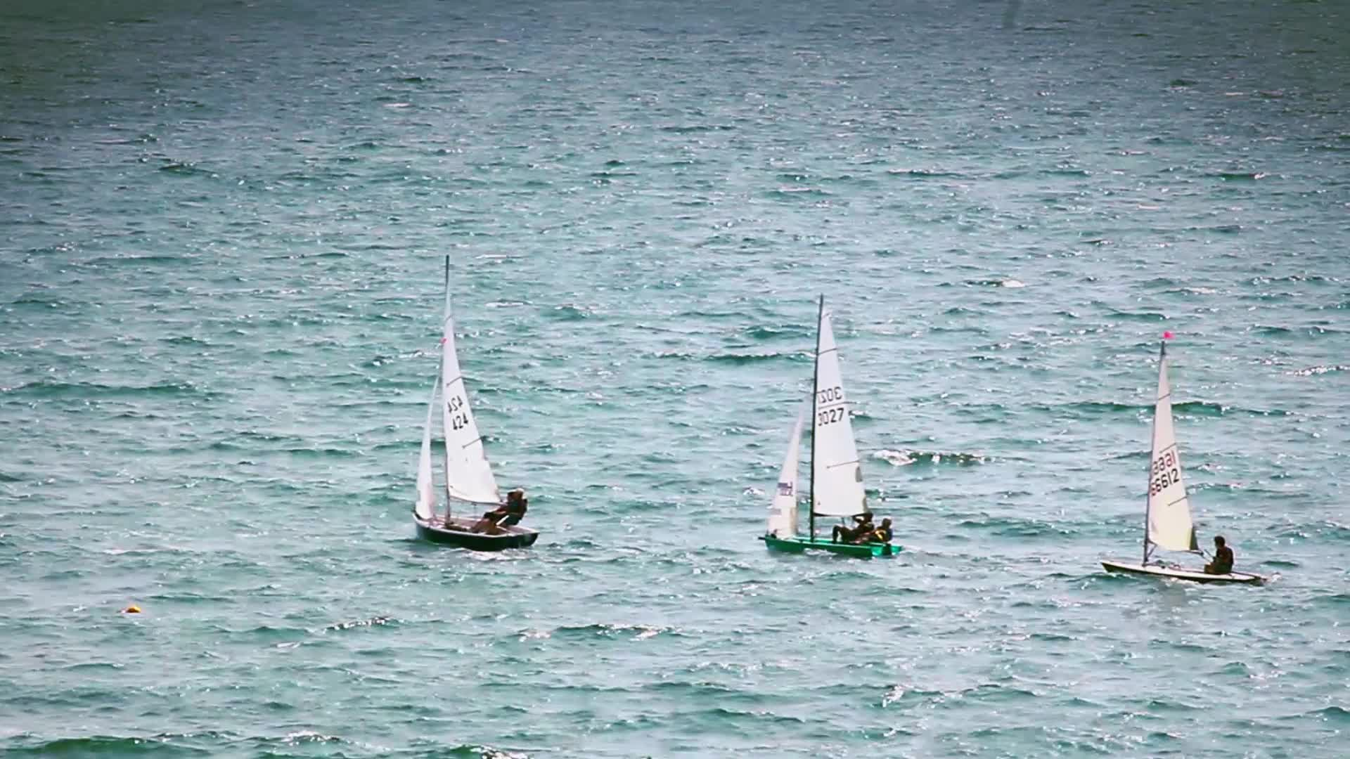 Watch free video Sailing Dingy's In the Sea
