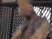 Watch free video Bobby Bird Bouncing Dancing Featherless LARC 081