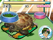 Turtle Care game