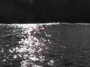 Watch free video Seagulls Flying Near Ship Cabo San Lucas
