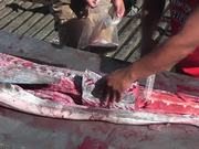Watch free video Swordfish Cutting Up Close Up Cabo San Lucas