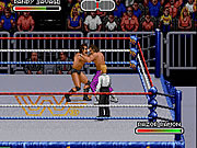 WWF Royal Rumble (1993) game