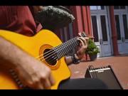 Watch free video Faramarz Aslani - Yar Official Music Video