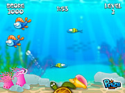 Buba Fish game