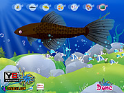Aquarium Fish Decor game