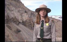 Watch free video Yellowstone National Park: Bighorn Sheep