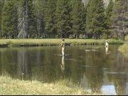 Mira dibujos animados gratis Yellowstone National Park: Fishing in Yellowstone