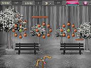Coconut Arrow Shooting game