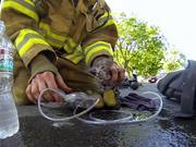 Watch free video GoPro Camera Video: Fireman Saves Kitten