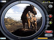 War Horse - Find the Numbers game