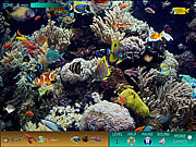 Juega al juego gratis Hidden World: Underwater