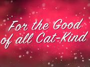 Watch free video Celebrity Cats: Hard To Be a Cat at Christmas