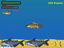 Little Bass Survival game
