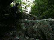 Watch free video Woman Walking in Nature