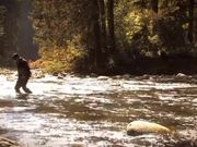 Watch free video Fisher & Hunter