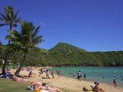 Watch free video Panning Beach Shot in Hawaii