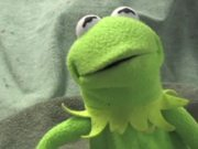 Watch free video Kermit has a Meltdown
