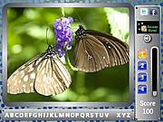 Butterfly - Find the Alphabets