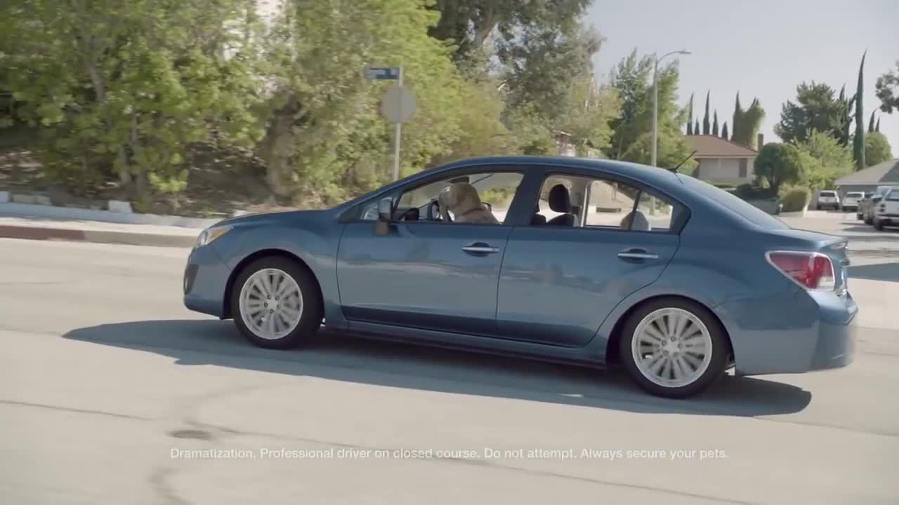 Watch free video Subaru Campaign: Dog Tested