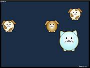 P - Cat game