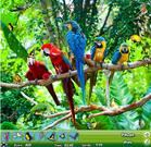Zoo Hidden Object game