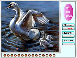 Faboulous Swans Hidden Numbers game