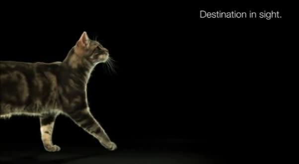 Mira dibujos animados gratis Whiskas Cat Network Commercials