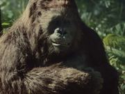 Watch free video Novartis Commercial: Gorilla