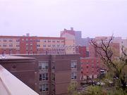 Watch free video LEED Platinum Apartment Building - New York